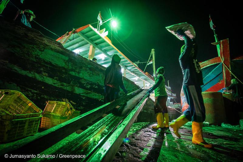 Migrant Fishermen in Indonesia