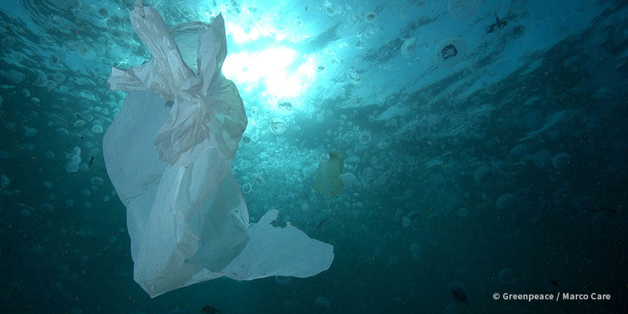 A plastic bag floating in the ocean.